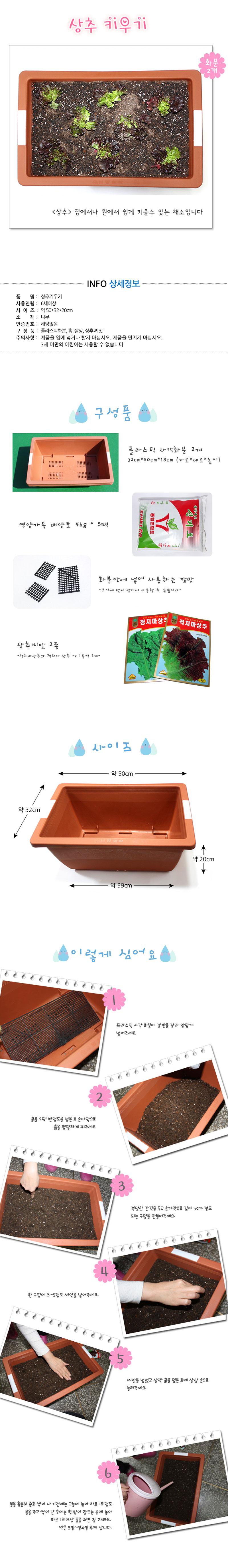 -채소키우기- 상추 씨앗 심기 세트 - 에코키즈, 46,000원, 새싹/모종키우기, 새싹 키우기